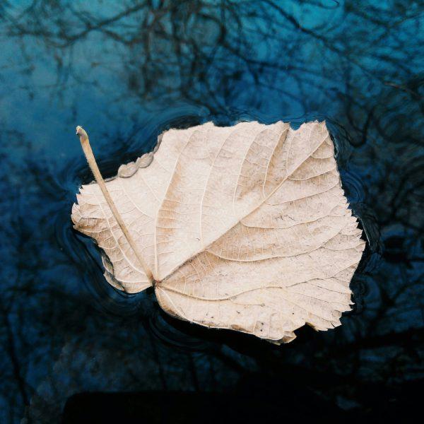 Achtsamer Umgang mit Gedanken und Gefühlen - Loslassen